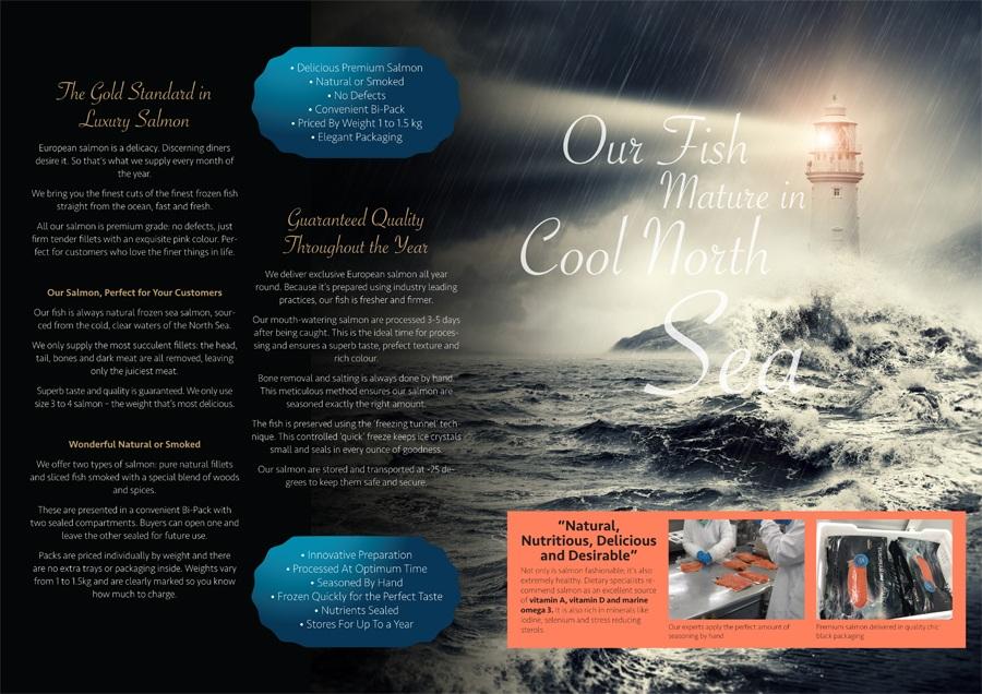Contenido del folleto mercado nigeriano. Brochure content for the Nigerian market. Contingut fulletó pel mercat nigerià.